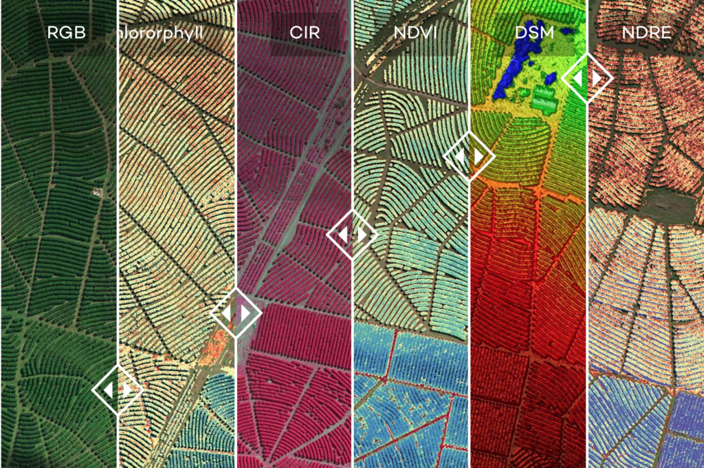 The industry standard multispectral sensor