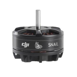 Snail Motor 2305-1200x800