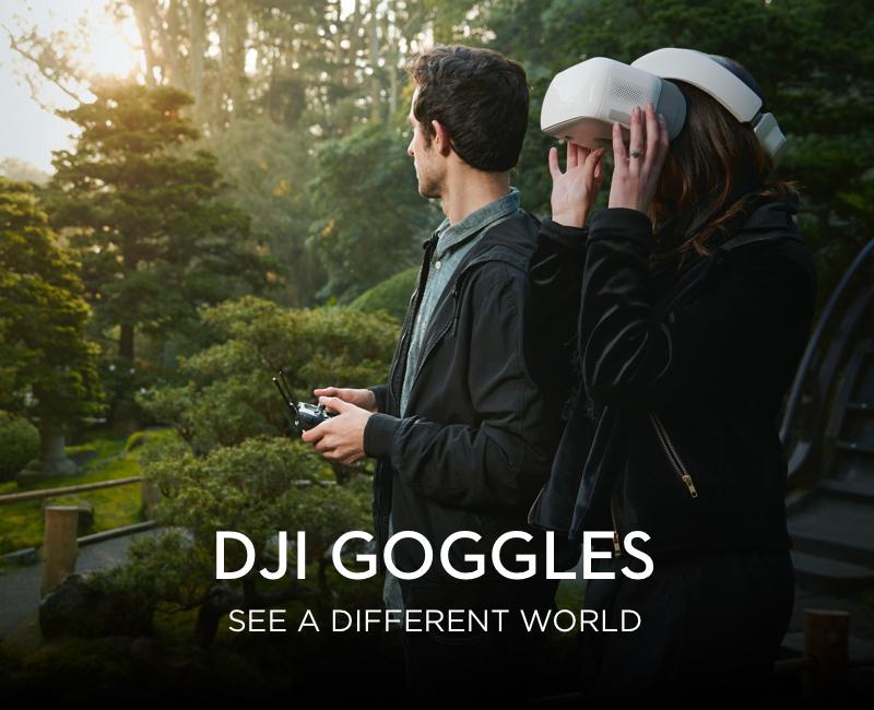 DJI Goggles FBV prillid